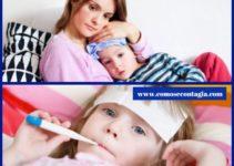 Como se contagia el parvovirus humano