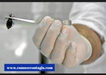 Como se contagia mal de chagas