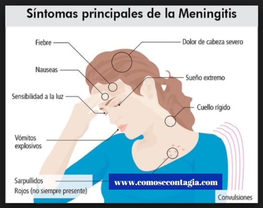 Como se contagia meningitis b – Prevención