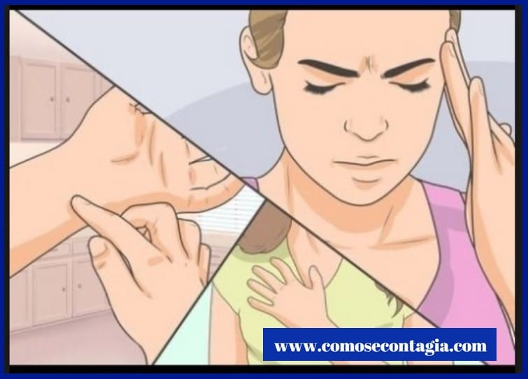 Como se contagia tifoidea, síntomas y consecuencias